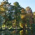 Photos des lecteurs | Couleurs d'automne - balade automnale au lac de Souston