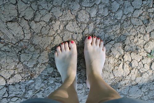 Le sentier pieds nus SensoRied à Muttersholtz