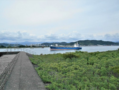 jp-kochi-Tatsura-hama (11)