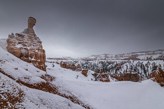 Solitary Moment in Bryce Canyon