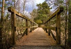 Heimische Holzbrücke