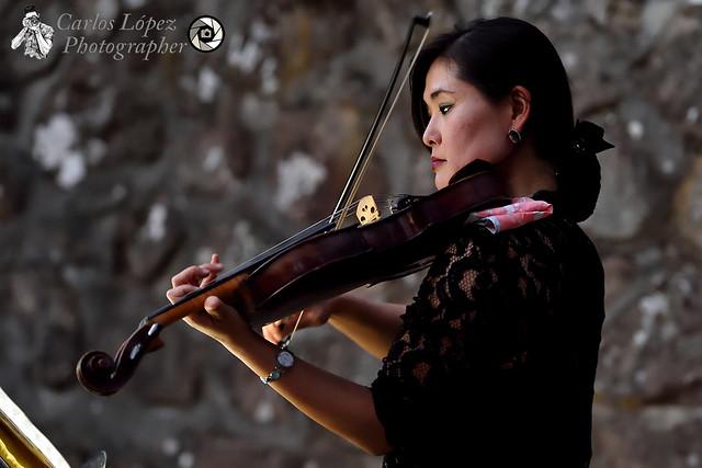 Concierto música clásica y naturaleza 26