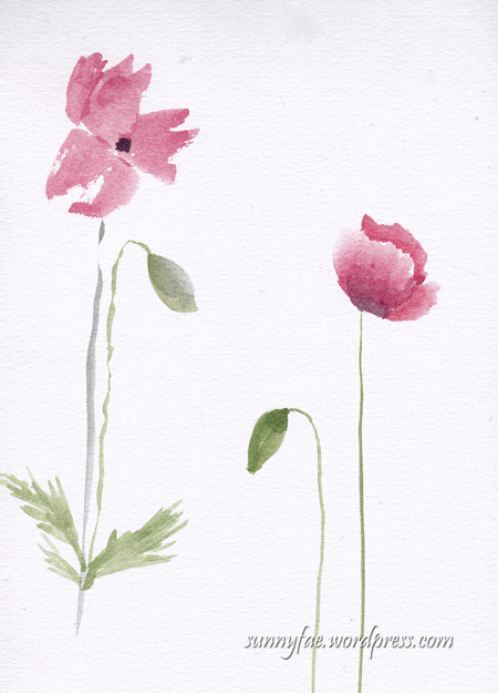 tall thin poppies