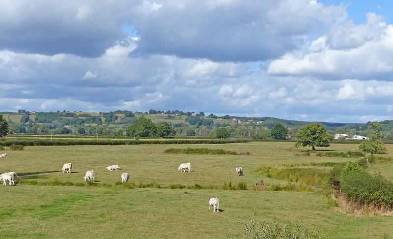 A travers le Bourbonnais, le Beaujolais et la Bourgogne... 36513932733_f09dc9475a_c