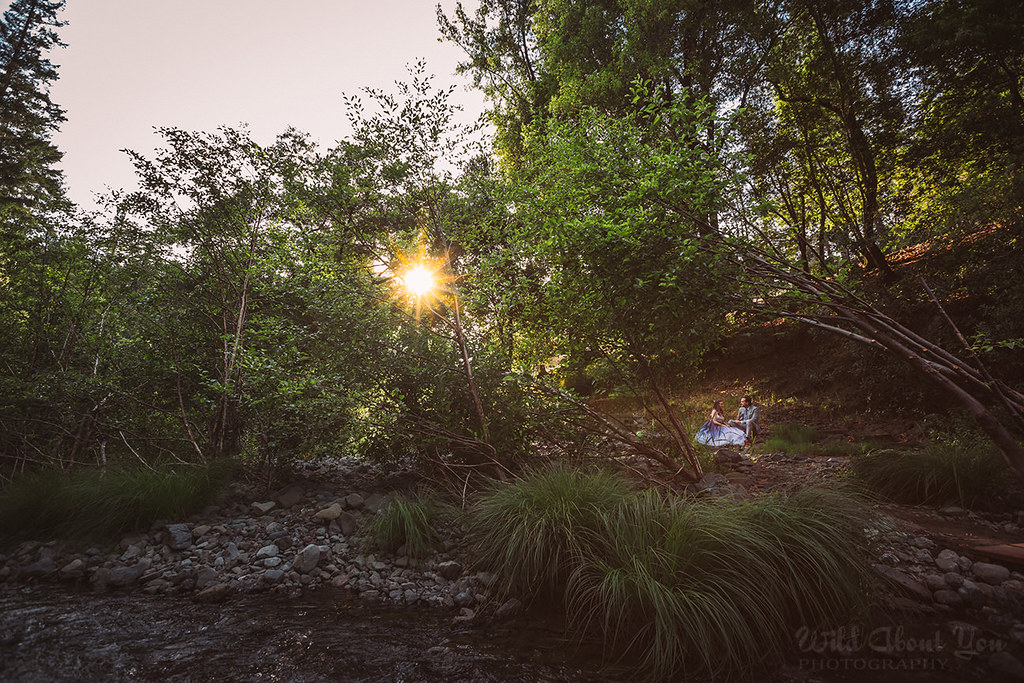 redwoodwedding063