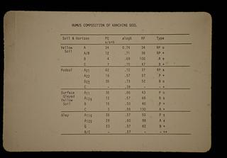 Humus Composition Of Kanchin Soils = カンチン土壌の腐植