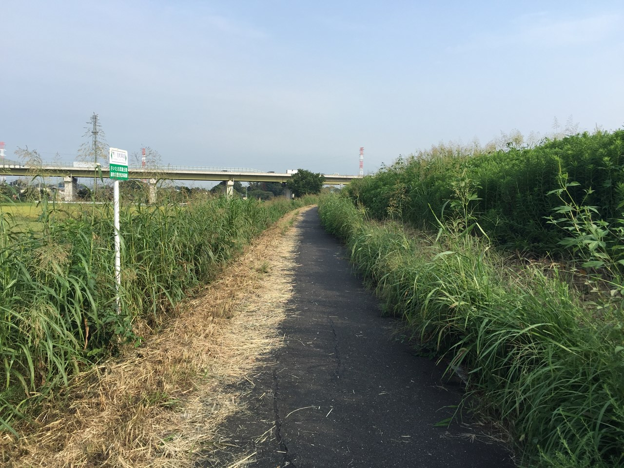 20170826_Arakawa Long Run (12)