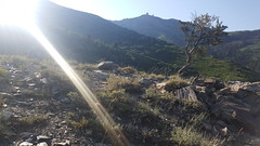 Wasatch Front 100 Course