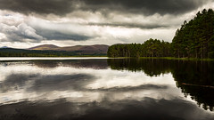 Cairngorms - Scotland