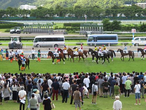 小倉競馬場のスタート前の馬たち