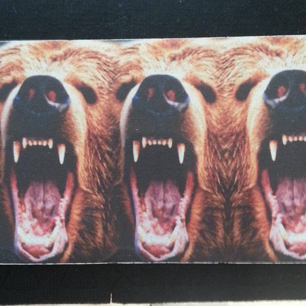 No actual Grizzlies were hurt in the making of this sick griptape. #grizzlygriptape #growler #calstreets