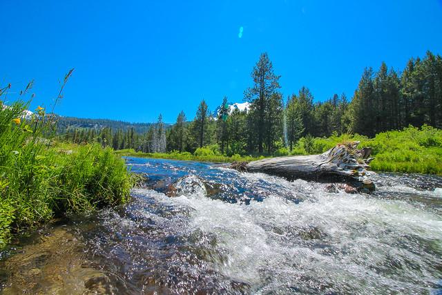 Stream in Lassen Volcanic National Park