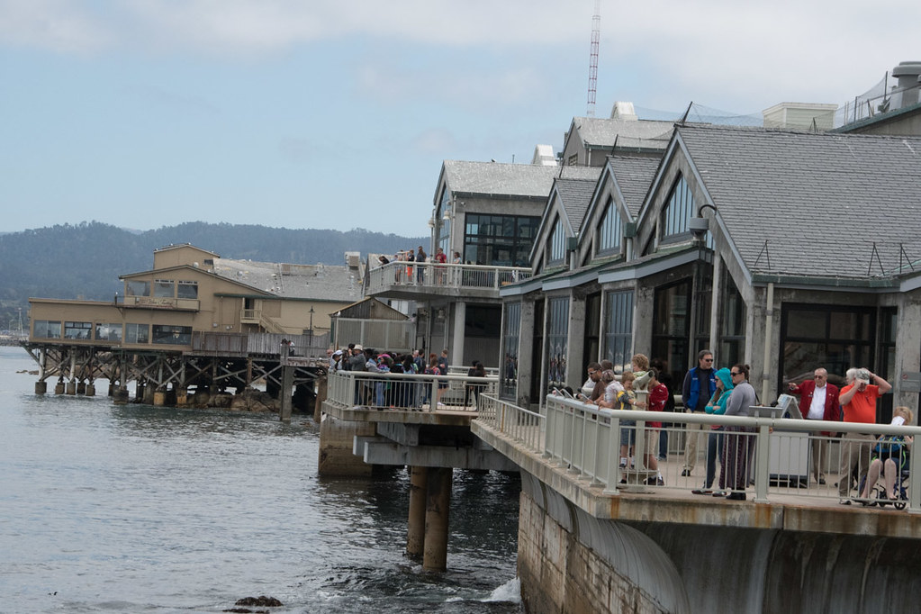 Views of Monterey Bay from the Aquarium Decks