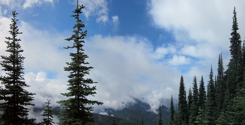 The clouds begin to break up and blue sky appears as we hike along the Miners Ridge Trail