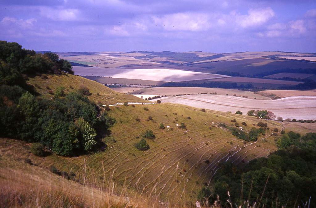 Ridge View 2