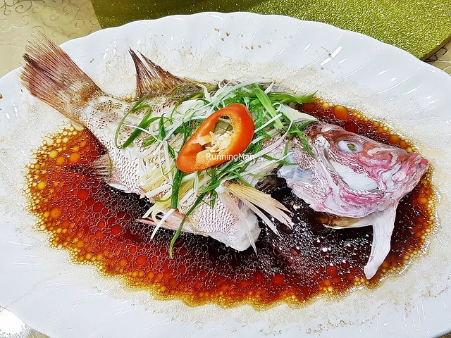 Fresh Red Snapper Fish Steamed In Superior Soya Sauce