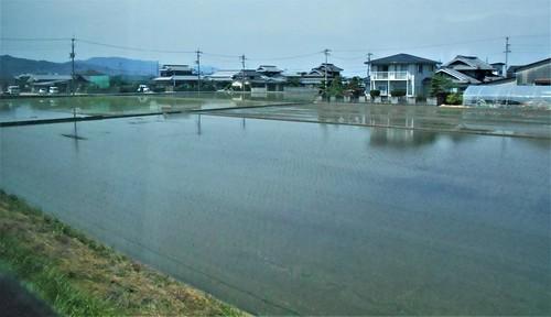 jp-Matsuyama-uwajima (1)