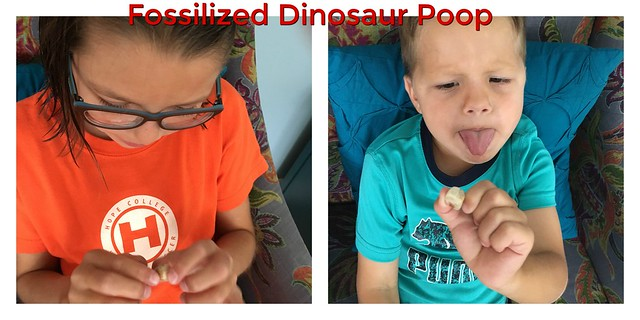 dinosaurpoop