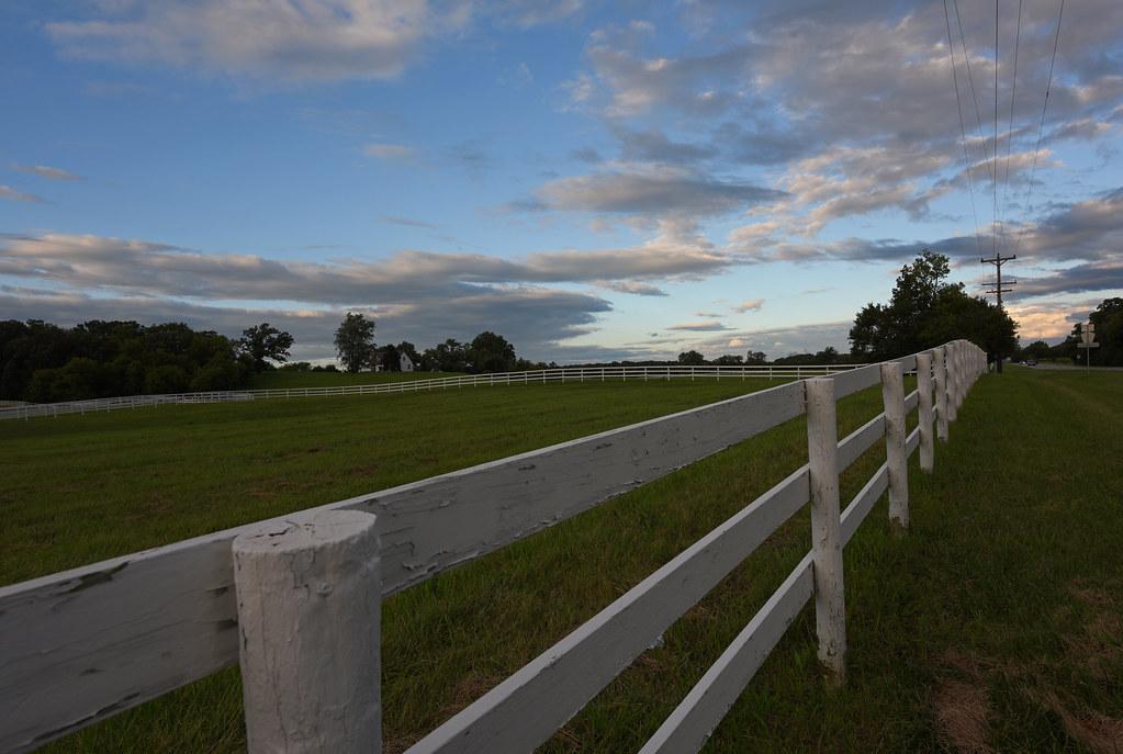 White Fence farm