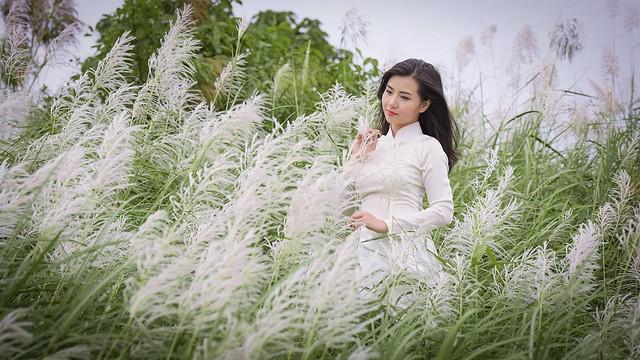 co lau duoi ga - Linh Van Dinh (15)