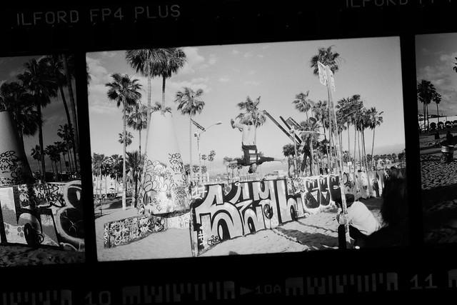 flip shot on canon, Canon EOS 5D MARK IV, Canon EF 100mm f/2.8L Macro IS USM