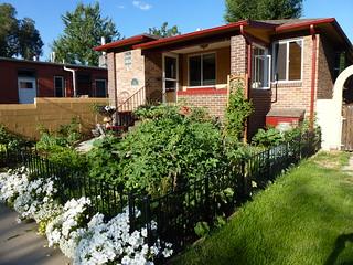 Garden side view 2013