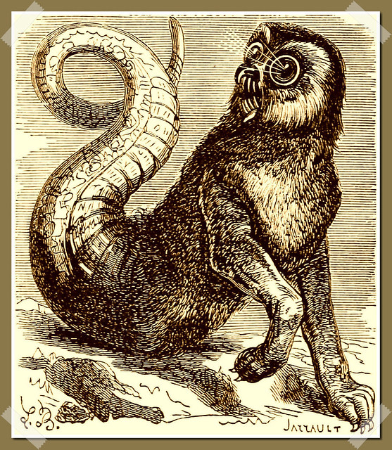 Amon as depicted in Collin de Plancy's Dictionnaire Infernal, 1863 edition.