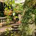 L2017_4512 - Dewstow House  & Grottoes, Caerwent