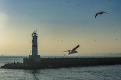 2013-Turquia-Istambul-0399.jpg