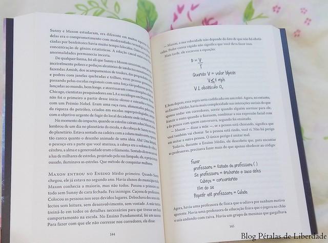 livro Todas as constelações do amor, Lydia Netzer (3)