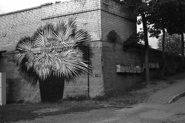 Kaunas, 60