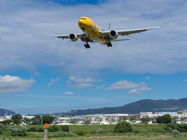 Itami Airport 2017.8.3 (23) JA743A / C-3PO ANA JET (B777-200)