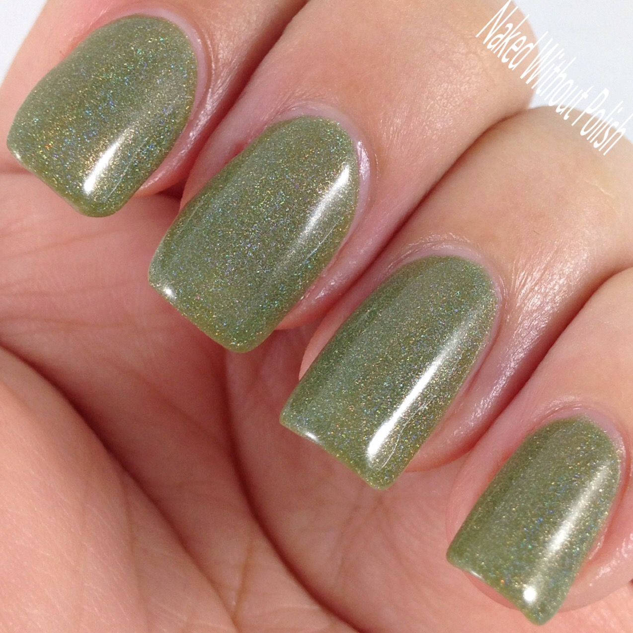 LynBDesigns-Why-Not-Take-Olive-Me-8