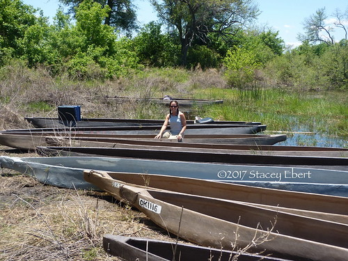 Learn something new in a new setting - Okavanga Delta, Botswana. From Through the Eyes of an Educator: The Beginning