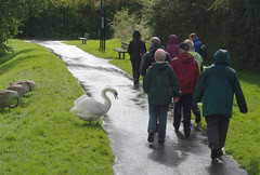 Preston Heritage Open Days - Haslam Park Heritage Walks