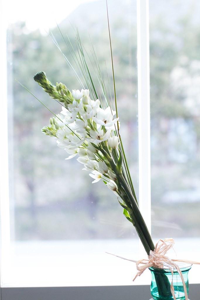 kukkia03