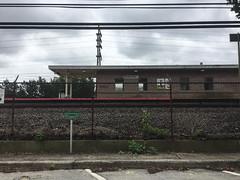 Bellrose Station, Bellrose
