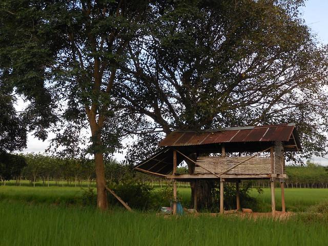 Farm shed 3, Nikon COOLPIX S5200