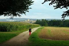 Balade près de Montmédy, Meuse, France. - Photo of Lamouilly
