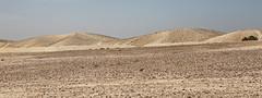 Israel-Negev-39418_20140422_GK.jpg