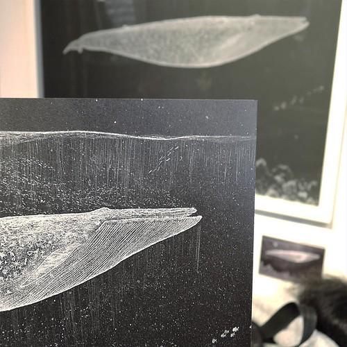 ひらしまさんの、塩水アート。時間とともにイメージが変遷していくのが面白い。 #ぼくらのうみ展