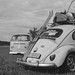 bug and bus by BiERLOS a.k.a. photörhead.ch