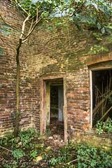 old farmhouse-00413