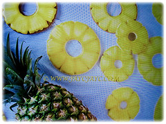 Showing pineapple slices of Ananas comosus (Pineapple, Nenas in Malay), 14 Sept 2017