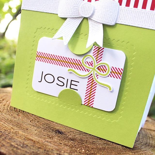 Josie's Gift Bag 3
