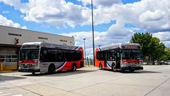 WMATA Metrobus 2012 Orion VII 3G Diesel #3040 & 3044