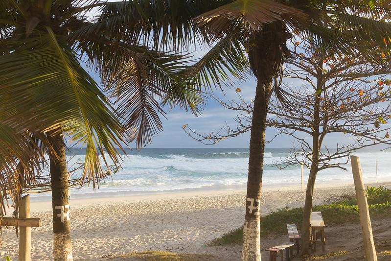 Brazilian shore