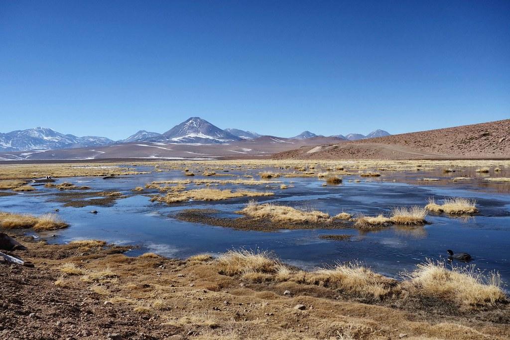 San Pedro Atacama - Geysers del Tatio - Lagune 2