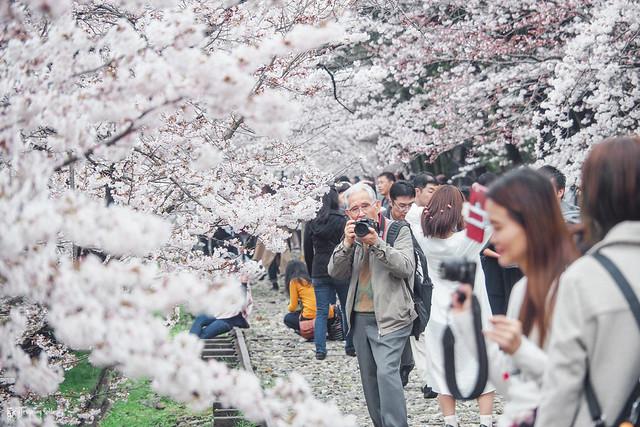 十年,京都四季 | 卷四 | 那兒春色滿城 | 06