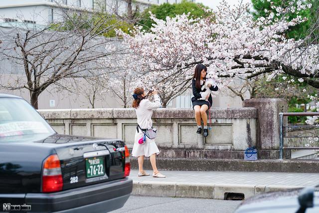 十年,京都四季 | 卷四 | 那兒春色滿城 | 04
